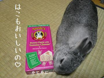 20080314_8.jpg