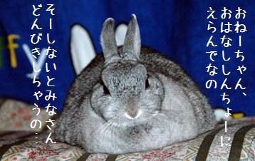 20080315_2.jpg