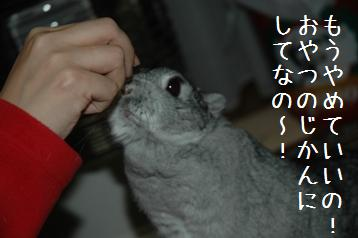 20080315_4.jpg
