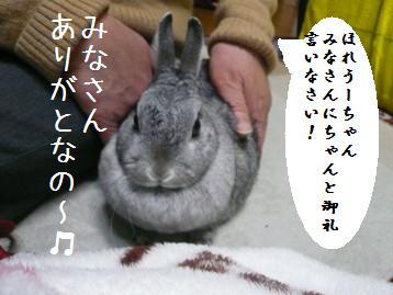 20080318_4.jpg
