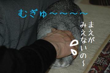 20080318_5.jpg
