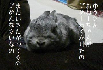 20080322_21.jpg
