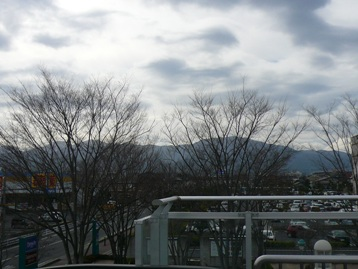 20080322_8.jpg