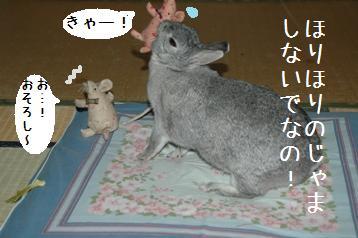 20080323_4.jpg