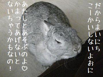 20080327_5.jpg