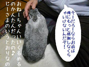 20080327_6.jpg