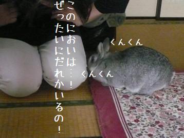 20080330_3.jpg
