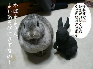 20080330_5.jpg