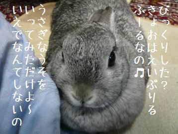 20080401_6.jpg