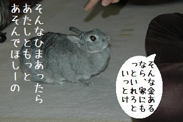 20080403_2.jpg
