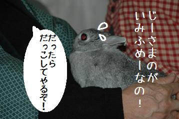 20080403_4.jpg
