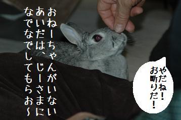 20080403_6.jpg