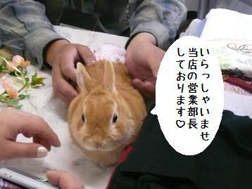 20080406_11.jpg