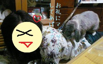 20080408_19.jpg