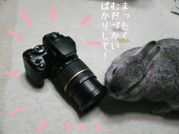 20080408_31.jpg