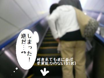20080408_32.jpg