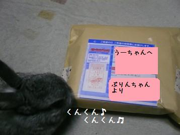 20080413_1.jpg