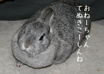 20080413_7.jpg