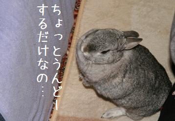 20080415_2.jpg