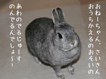 20080419_1.jpg