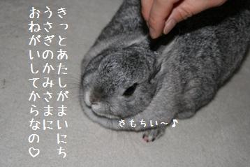 20080422_3.jpg