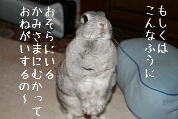 20080422_5.jpg