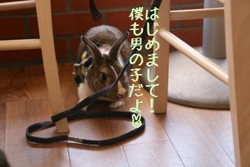 20080506_14.jpg