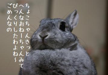 20080506_19.jpg