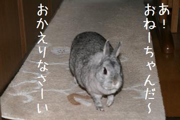 20080508_4.jpg