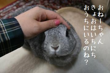 20080511_3.jpg