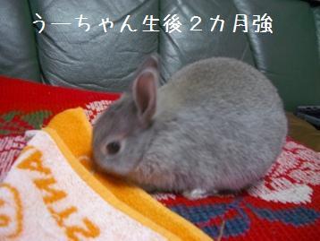 20080518_8.jpg