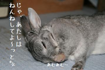 20080518_9.jpg