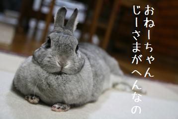 20080528_1.jpg