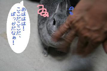 20080601_13.jpg