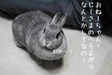 20080601_15.jpg