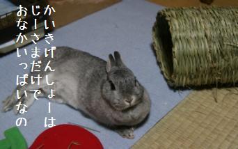 20080605_6.jpg
