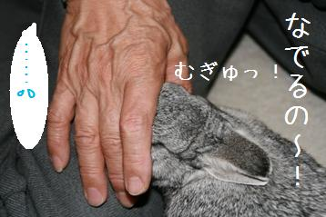 20080605_7.jpg