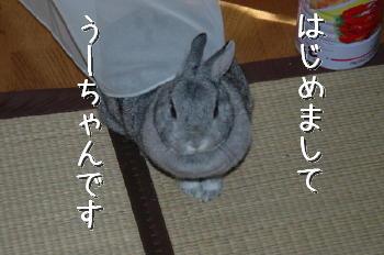 DSC_24802.jpg
