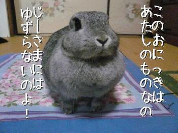 DSC_24802_2.jpg