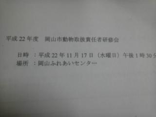 101117_193134.jpg