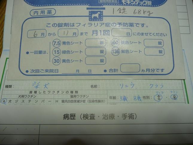P1050847.jpg
