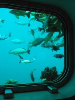 海の中の展望台