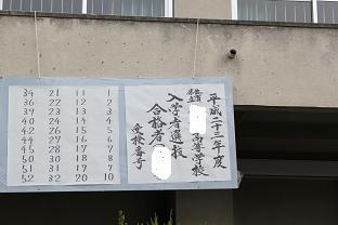 IMG_0382.jpg