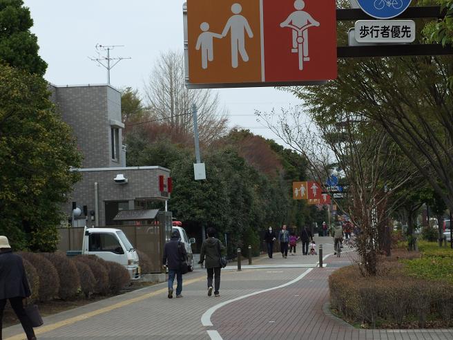 2011_0410野川-桜0099
