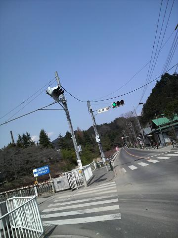 P1000428.jpg