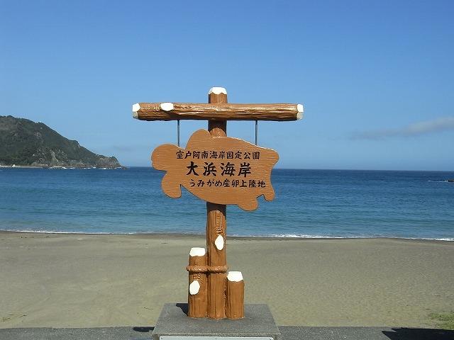 大浜海岸でウェルかめ R0022948