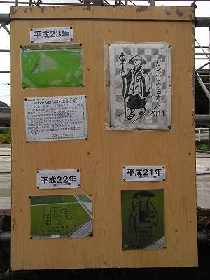 田んぼアート6