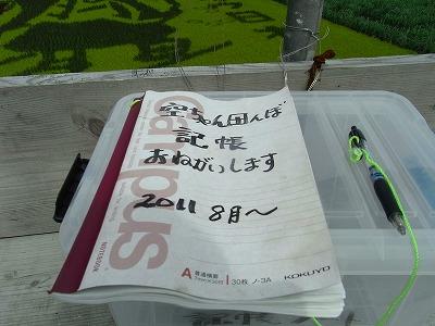 田んぼアート3