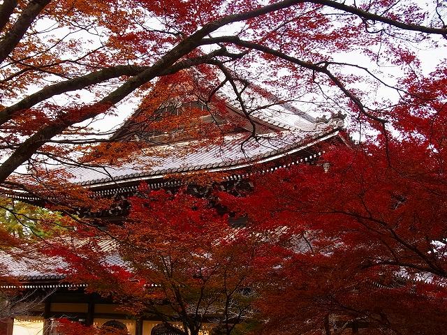 南禅寺4法堂