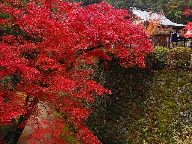 西山興隆寺3